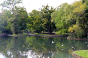 Dufferin Islands, Niagara Falls