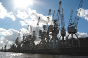Cranes in Hamburg Harbour